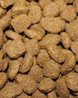 Croquettes pour votre chien de grandes marques